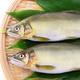 お魚マイスター直伝!アユをきれいにおいしく食べる方法