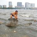 淀んだお台場の海に入る週刊プレイボーイ記者。水中メガネで海の