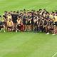 古瀬巡査を励ます動画撮影のため、集合するラグビー日本代表の選手たち=18日午前、宮崎市内