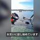 ニュージーランドの砂州に打ち上げられたクジラ 28頭が海に戻る