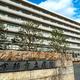 新型コロナウイルスの軽症患者2人が治療を受け、退院した京都市立病院=同市