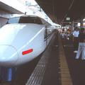 Large 200117 hikari 04