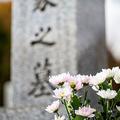 墓石の前に立てられた花