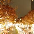来月3日まで開催される『Fairies 表参道イルミネーション2011』