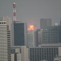 新宿から見えた市原コンビナート火災撮影:石津(@ishiduu)