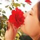おならをバラの香りに変える錠剤