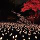 2万本の明かりで幻想的に 第20回たけた竹灯籠「竹楽」開催