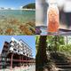 美しくも厳しい自然の中で生きている。【岩手県宮古市】で愉しむ海を感じる旅