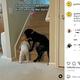 1歳児が階段を上がるのを阻止する犬(画像は『Good News Movement 2021年6月12日付Instagram「Watch this dog protect this toddler from climbing the stairs.」』のスクリーンショット)