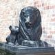 現在設置が進んでいるライオン像。2011年以降はデザインが統一されています=大京提供