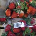 規定を満たさない残留農薬が検出された日本産イチゴ=食品薬物管