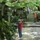 JR東海「そうだ 京都、行こう。」苔と新緑で美しい初夏の京都を巡ってみた