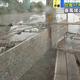 台風17号 暴風域の沖縄・那覇は…けが人や倒木被害