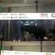 緊急事態宣言発令前の7日(上)と発令後8日(下)午前8時の東京渋谷駅の様子。緊急事態宣言後にも依然と多くの人々が行き来している。ソ・スンウク特派員