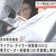 ゴーン被告を逃亡させたか 米国人親子を日本に移送