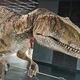 恐竜王国・福井へ潜入。恐竜博物館と越前松島水族館を親子でハシゴ!