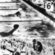 <あのころ>「前畑ガンバレ!」 ベルリン五輪、女子初の金