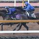 松山騎手を背に併せ馬で追い切るデアリングタクト(左)(撮影・亀井 直樹)