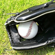 強豪校は地元以外の選手だらけ「野球留学」の実情、沖縄県の場合
