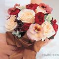 幸せの花言葉を持つ冬の花