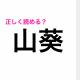 「さんそう」は間違い!「山葵」の読み方は?【読み間違いが多い漢字】