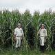 2020年、MLBが野球映画「Field of Dreams」の農場で公式戦