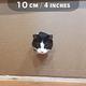 どのくらいの大きさの穴まで猫は通過可能なのか 10cmは無理?