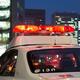 30億円相当のルビー原石盗難の通報で警察が駆け付けたが…(naka stock.adobe.com.jpeg)