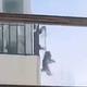 中国の隔離アパート、2階から犬を「たこあげ式散歩」新型肺炎で苦肉策