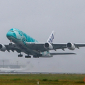 Large 200622 a38 02