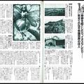 妖精に関するレポートは『ムー』1999年4月号(221号)の記事にあ