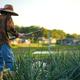 「スマート農業」の浸透加速!政府の展望とは