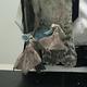 英チェルムスフォードで見つかった、足にマスクが絡まった鳥。王立動物虐待防止協会(RSPCA)提供(2021年1月6日撮影、公開、資料写真)。(c)AFP PHOTO /RSPCA