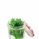 冷蔵庫にそのまま放り込んでいない?知っていると得をする、夏の食卓を彩る香味野菜の保存法