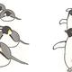歩くより腹で滑った方が速い?どんまいなペンギンの生態が次々発覚!