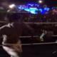 タイのお祭りで喧嘩騒ぎを起こした若者5人がプロのムエタイ選手に鉄拳制裁される