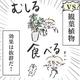 漫画「あかちゃんVSインテリア」のカット=育児漫画。フジサキ(fu.ji.sa.ki)さん提供