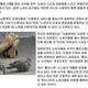 韓国で仕事不足