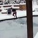 凍ったプールに落ちた愛犬を飼い主の女性が躊躇なく飛び込み救出/Jennie Tatum via ViralHog