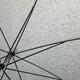 【使える英語】雨の季節…せっかくのイベントが「rain out」!「雨」に関する英語フレーズ
