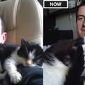 猫の3か月と3歳を比較07