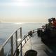 ノルウェーの捕鯨船に乗り、クジラ捕りの最前線を見た