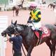 【神戸新聞杯】武豊「ラストの脚は良かった」ワールドプレミアは上がり最速の3着