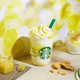 レモン ヨーグルト 発酵 フラペチーノ