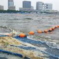 東京五輪でトライアスロンなどが行なわれるお台場海浜公園。競技