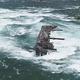 岩に引っかかっていた難破船が強風と大雨の影響で過去100年で初めて大きく移動した/from Twitter/Niagara Parks