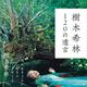 内田裕也への想いも!深すぎる樹木希林の「遺言」が40万部超え大ヒット!!