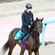 今週デビューするラインベック。超良血馬はどんな走りを見せるか