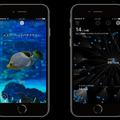 使用イメージ。 一度、見つけた生き物はアプリ内の系統樹に記録