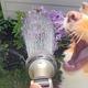 シャワ—ホースから水を直飲みする犬 投稿にウチも一緒との声も